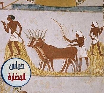 لوحات حفائر مقابر شمال سقارة والتى ترجع الى عصر الأسرتين الاولى والثانية